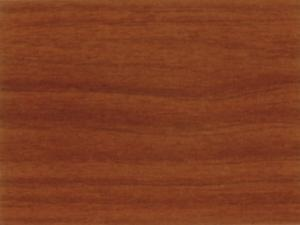 Black Walnut FV8349